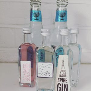 mini Wessex Spirits gins and mixers