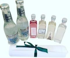 contents of the virtual gin tasting